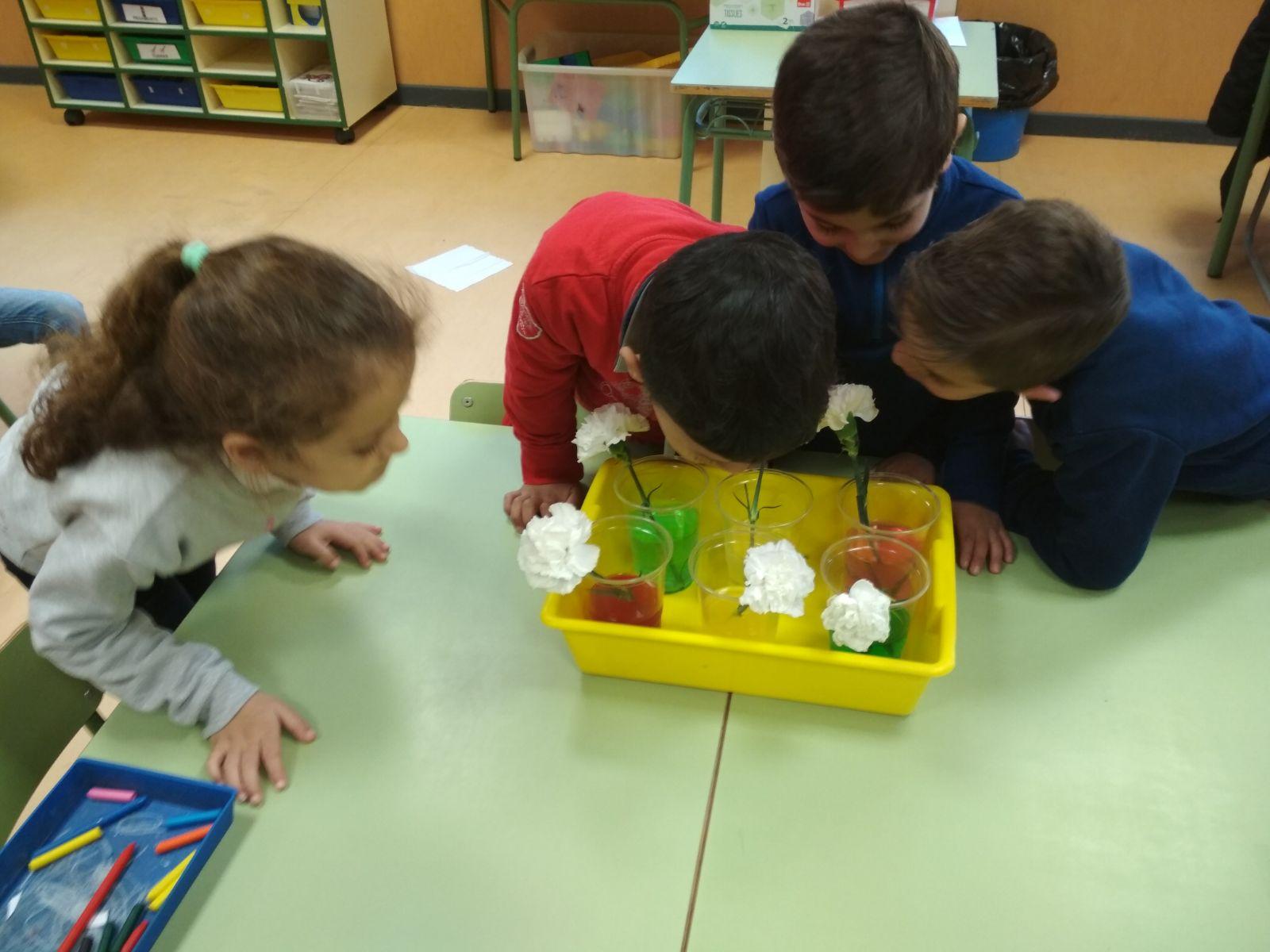 Proyecto Del Agua En Educación Infantil Ceip Maestros Del Casar El Casar Guadalajara